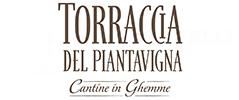 Torraccia